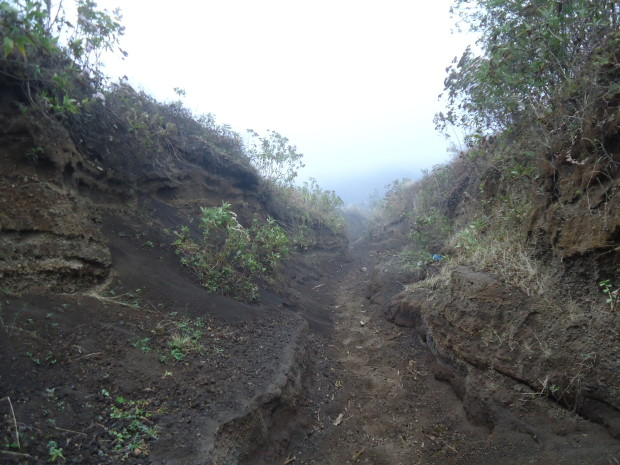 im1 - volcan de acatenango