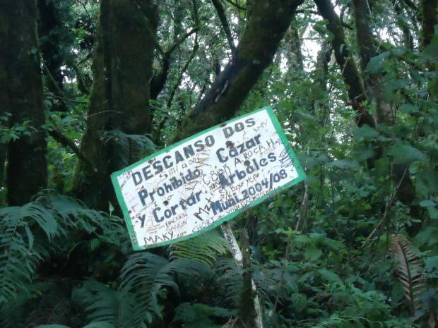 im10 - volcan de acatenango