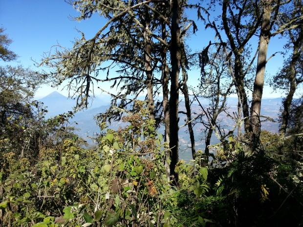 im14 - volcan de acatenango